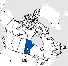 Manitoba Area Code Map