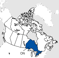 Ontario Area Code Map